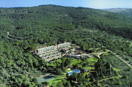 מלון יערות הכרמל